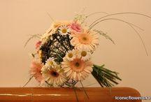 Iconic Flowers workshop cu Nicolae Agop / Iconic Flowers by Madalina Sandu a participat la workshop-ul la care invitat special a fost maestrul florist Nicolae Agop, recunoscut si apreciat in intreaga lume pentru talentul si indemanarea sa in design-ul floral