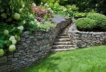 Outdoor spaces/Gardens/Patios