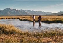 OWENS RIVER CALIFORNIA / Fly fishing the Owens River in California.