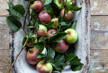 Food Photography / Mixed ideas...