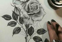 Drawings Roses