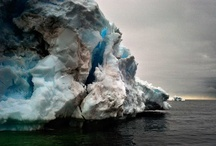 Icebergs / by Carrie Buxbaum