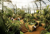 Botanical Gardens Around the World / We love botanical gardens don't you?
