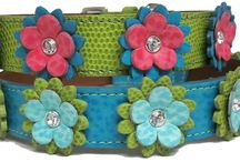 Colorful Dog Collars  & More / Colorful custom made to order Leather dog collars available at DoggyTreasures.com. Depending on design, select from 30+ leather colors and several Swarovski Crystal colors. Your pup will love one of these beautiful leather collars, leads, or harnesses (and more). See them all at ►► http://doggytreasures.com/Colorful-Leather-Dog-Collars-c241/