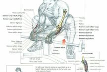Anatomía de ejercicios hombres