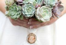 Wedding Wonders / by Adele Sweeney