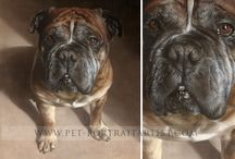 Pet Portraits Oil Paintings by Nicholas Beall / These are just a few of the oil paintings of dogs, cats and horses Nicholas has painted. Visit our website to see lots more!