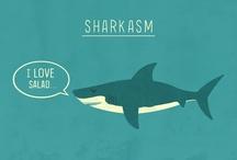 Sharkasm & Humor / by MaduroDive