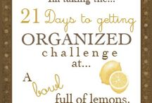 organization / by Janeen Shaw