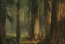 Landscapes / Art from the Akron Art Museum collection that features landscapes as subject matter.