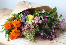 Inspirações | Flores