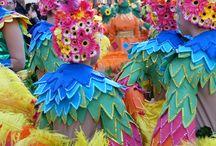 Carnaval 2014 Torrevieja / El Carnaval de Torrevieja está declarado de Interés Turístico Provincial