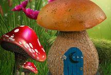 Fungi / by Deanna Niccum