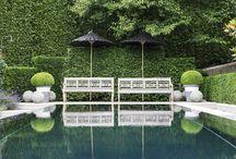 Amazing Gardens.x