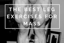 Workouts for Mass
