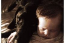 Our Blogs / Get all the news from Animal Family Right from out blog! http://www.animalfamilyveterinarycare.com/blog/