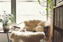 Living Room / by Emily Gregory
