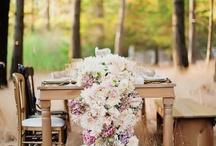 weddings / by Gena Williams