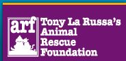 Dog Rescue Orgs