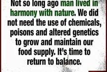 Organic food is the way