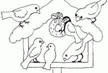 MŠ ptáci