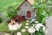 Fairy Gardens!! / by Julie Owens
