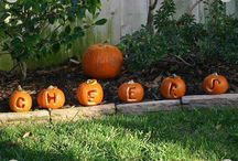 Harvest & Fall