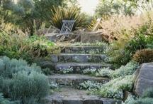 FG Garden