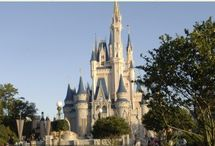 Disney World / by Meredith Mabe