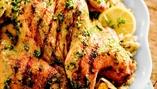 Chicken Feeds