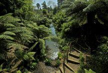Gardens, Parks: UK