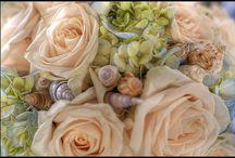 Wedding flowers / by Melanie Attwell