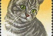 Selos de gatos