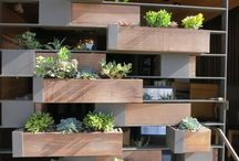 Plant dividers