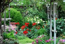 Gardening / Great gardening ideas from across the web.