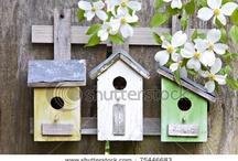 Birdhouses, birdfeeders and bees / by Lorri Maus