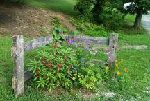 House/garden ideas