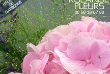 halles de Narbonne / Rolande Fleuriste aux halles de Narbonne, design floral, bouquets chic et champêtre, un étal de fleurs moderne installé dans un ancien étal de boucher, un savoir-faire contemporain dans un marché traditionnel