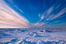 Polar environments