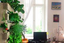 vertikaler Garten aus einer Palette - DIY / Vertikal ist der neue Garten! Mit einem vertikalen Garten  kannst Du Deine Pflanzen in die Senkrechte bringen.  Wir zeigen Dir, wie Du aus einer einfachen Einweg-Palette einen atemberaubenden, vertikalen Garten zimmern kannst.  Hier geht's zur ANLEITUNG: www.urban-kraut.de/pages/der-vertikale-diy-garten-aus-einer-palette