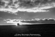 Maisemakuvia - Landscape / Maisemakuvia