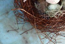 Birdies / by Jill