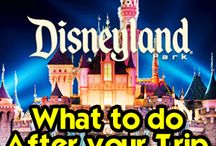 Disney Honeymoon - Afterwards / 10 Days at Walt Disney World Then a 14 night Disney Cruise through the Panama Canal and up to California for 5 Days at Disney Land
