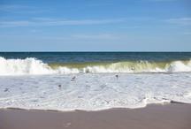 the beach / by Amanda H