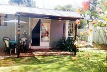 Lemon Tree Lodge - Parys, Free State / Guest cottages