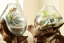 decoration in glass vase