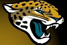 Jacksonville Jaguars (NFL) 2013 / Jacksonville Jaguars (NFL) 2013 sRGB-Optimized Graphics