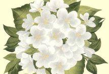 dekupaj örnekleri-çiçekler