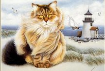 pictures of cats / by Beverley Gillanders