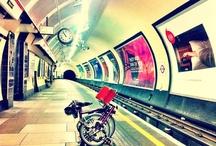 Bicycle / Riding